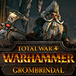 Белый гном Громбриндал штурмует врата Total War: WARHAMMER!